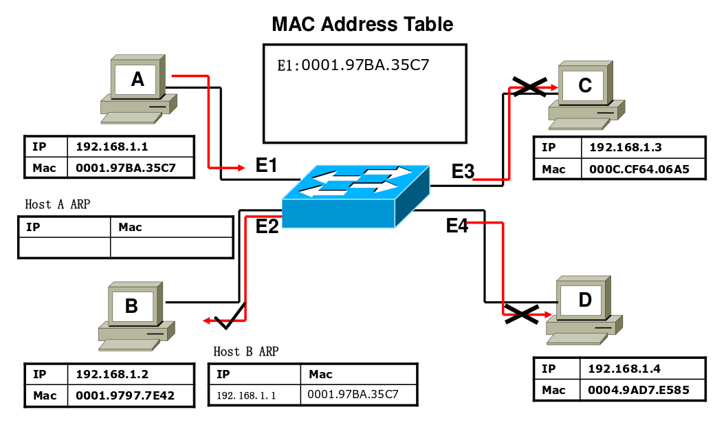 Introduction to Cisco Switches