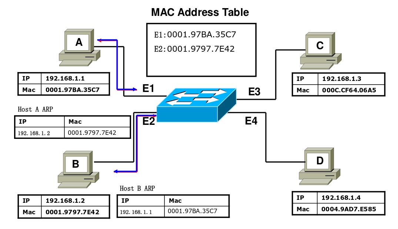 basic cisco switch commands pdf